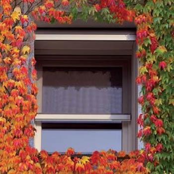 Zanzariere per finestra